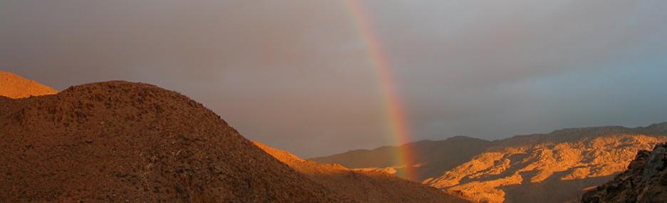 Vision Quest in Anza-Borrego Desert State Park